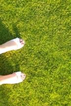 nawozy do trawników