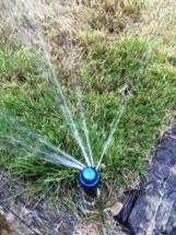 system-podlewania-ogrodu
