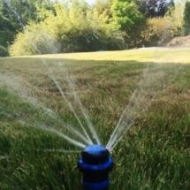 podlewanie-trawnika