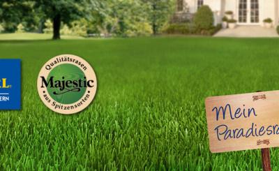 nasiona traw na trawniki przydomowe. Zakładanie trawnika lublin. Najlepsze mieszanki traw. Wysiew trawnika.