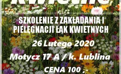 łąki kwietne - szkolenie Lublin - Motycz. Zakładanie trawnika. Nasiona traw na trawnik.